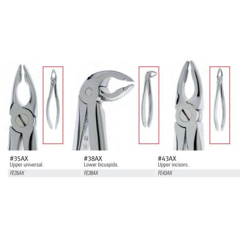 Extraction Forceps, English Pattern, Lower Anterior Tapered Beak