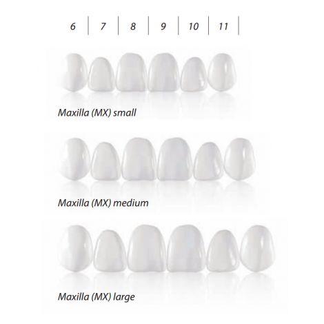 COMPONEER Veneer Refills - Enamel White Opalesence (Coltene)