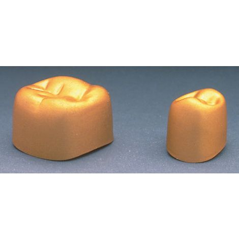 Aluminum Temporary Bicuspid Gold Anodized Crowns (DSC)