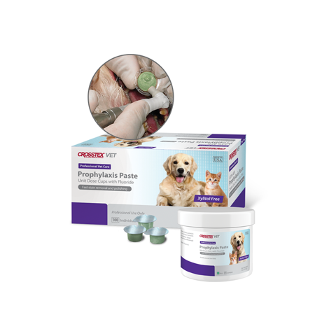 Pet Prophylaxis Paste (Crosstex)