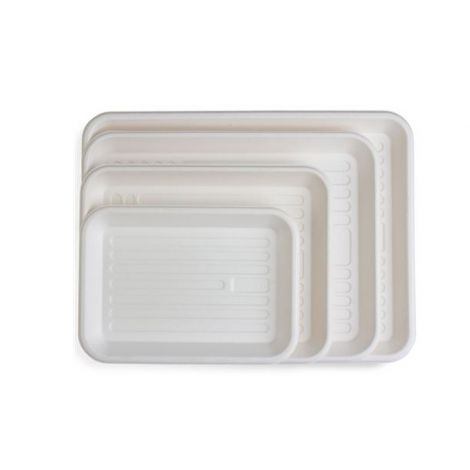 ECOsply Biodegradable Instrument Trays Large, Pk/250