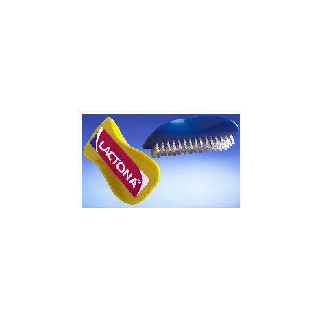 Scrub Brush (Lactona)